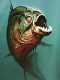 empiezo con las pirañas consejos porfabor - last post by dierguson